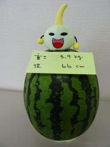 "JFEプラリソース(株) 今年は""スマート?""です。の写真"